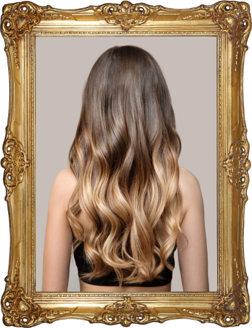 Back view of a long ombre style hair in a gold frame